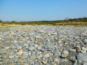 荒川のかわせみ河原